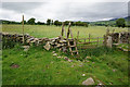 SD8070 : Ribble Way north of  Helwith Bridge by Ian S