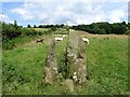 SK2950 : Squeeze stile on the path to Brownhouse Farm by Ian Calderwood