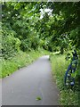 ST7265 : Sustrans marker, Bristol and Bath cycle path  by David Smith
