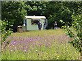 SS4917 : Catering outlet - RHS Rosemoor by Chris Allen