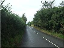 SO9568 : Buntsford Hill by JThomas