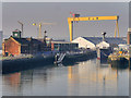 J3576 : Alexandra Dock, Belfast Harbour by David Dixon