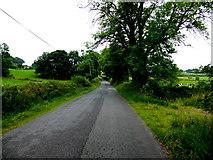 H6556 : Goland Road by Kenneth  Allen