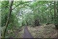 ST7374 : Dyrham Wood by Tim Heaton