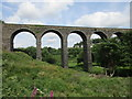 S3906 : Kilmacthomas Viaduct by Jonathan Thacker