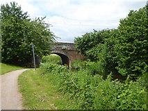 ST2625 : Bridge near Hyde Farm over Bridgwater and Taunton Canal by David Smith