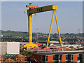 J3574 : Goliath Gantry Crane, Harland and Wollf by David Dixon