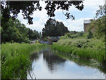 ST2325 : Footbridge over Bridgwater and Taunton Canal in Obridge by David Smith