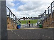 ST2224 : Cricket at Taunton by David Smith