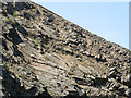 NY6828 : Sheep on rock slabs by Trevor Littlewood