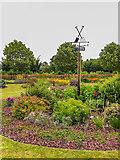 SE6656 : Breezy Knees Gardens by Ian Capper