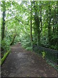 SX9792 : Bridge over drainage ditch, Sowton by David Smith