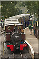 TL0017 : Steam Train, Whipsnade Zoo by Mark Anderson