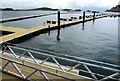 NM8529 : New pontoon berthing at Oban Harbour by Bill Kasman