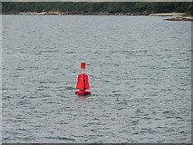 SW8332 : Lateral Buoy, West Narrows by David Dixon