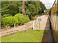SJ9853 : Leekbrook Junction, Churnet Valley Railway by David Dixon