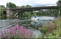 SU9777 : Victoria Bridge, Datchet by Des Blenkinsopp