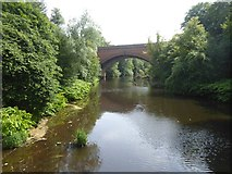 NS5767 : River Kelvin and Queen Margaret Bridge by David Smith