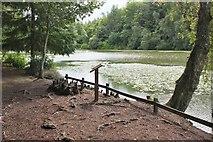 NT4227 : The Upper Lake, Bowhill by Jim Barton