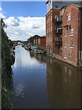 SO8554 : The Worcester and Birmingham Canal by Alan Hughes