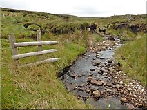 NY8121 : Beck on Lune head Moss by Roger Cornfoot