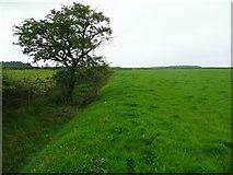 SD7657 : Footpath from Longtons Lane to Heath Farm, Gisburn Forest by Humphrey Bolton