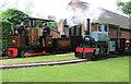 SK2406 : Statfold Barn Railway - garden railway by Chris Allen