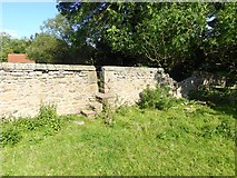NZ2115 : Stile in wall on the Teesdale Way by Oliver Dixon