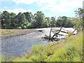 NZ2214 : River Tees below High Coniscliffe by Oliver Dixon