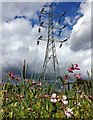 SK5702 : Electricity pylon next to the River Biam by Mat Fascione