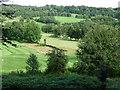 SK3162 : Matlock Golf Course, Cuckoostone Dale by Christine Johnstone