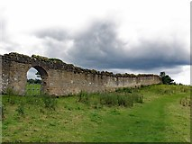 SE2768 : Abbey Wall at Kitchen Bank by Andrew Curtis