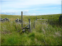 SD7558 : Stile on the footpath onto Holden Moor, Rathmell by Humphrey Bolton
