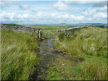 SD7659 : Gate on footpath from Holden Moor to Whelpstone Lodge, Rathmell by Humphrey Bolton