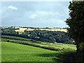 SX0950 : Farmland viewed from the South West Coastal Path by John Lucas