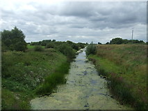 TL4279 : Old Bedford River, Sutton Gault by JThomas