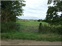 TL4279 : Field entrance off The Causeway, Sutton Gault by JThomas