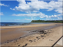 TA0390 : Looking towards Scarborough Castle by Phil Breeze