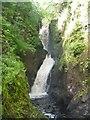 D2120 : Waterfalls walk [9] by Michael Dibb