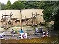 SO9490 : Orangutan Enclosure by Gordon Griffiths