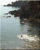 SX9364 : Anstey's Cove, Torquay by Derek Harper