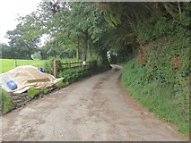 SS9708 : Access road to Shutelake Farm by David Smith