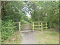 TQ4992 : Entrance into Havering Country Park by Marathon