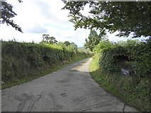 SS8811 : Track to Lythe-land Farm by David Smith