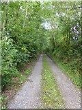 SS8811 : Heath Lane by David Smith
