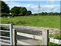 SJ9422 : Footpath near Baswich by Alan Murray-Rust