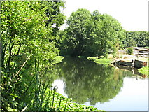 TQ0481 : The River Colne west of Old Mill Farm (2) by Mike Quinn