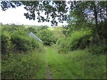 SS9209 : Track approaching Mill Farm by David Smith