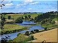 NT9249 : River Tweed at St Thomas's Island : Week 33