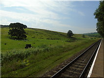 SD7920 : Irwell Vale to Holcombe Moor by Carroll Pierce